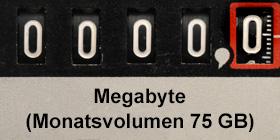 Stromzähler DSL Drosselung