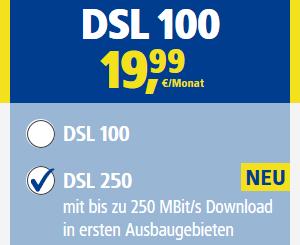 1&1 250 Mbit Buchung