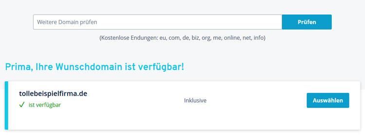 IONOS Webhosting: Domain wählen