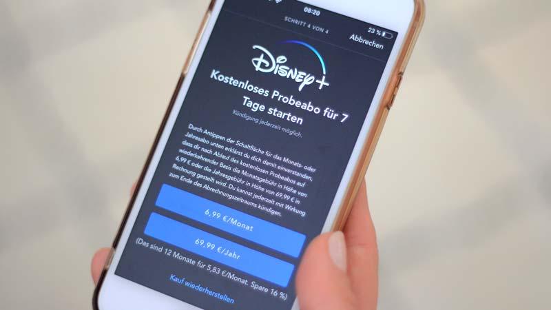 Disney Probeabo